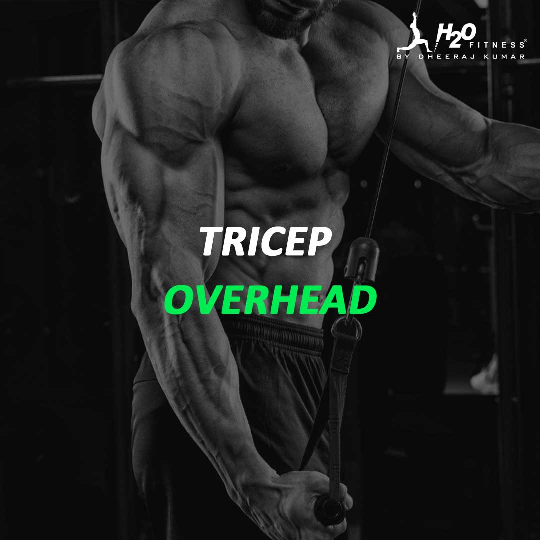 Triceps - Overhead